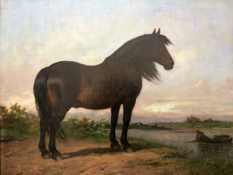 Dark Brown Pony - 19th Century Oil Painting