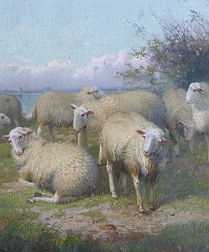 Flock of Sheep with Shepherd