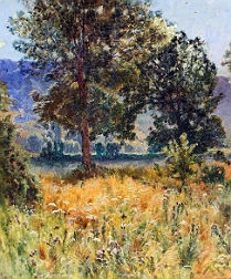 French Landscape - Crozant School