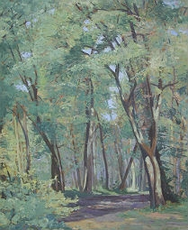 Summer Woodland Landscape - Oil Painting